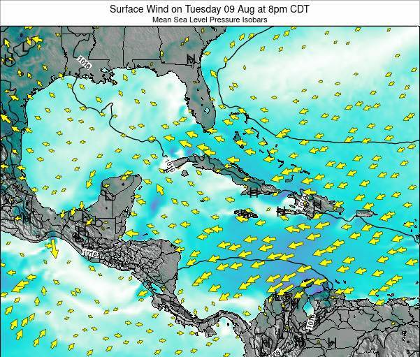 The Bahamas Surface Wind on Saturday 25 May at 8am CDT map