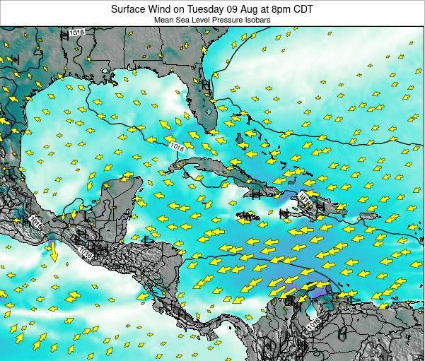 The Bahamas Surface Wind on Thursday 20 Jun at 8pm CDT map