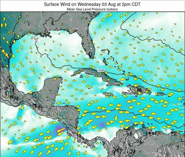 The Bahamas Surface Wind on Friday 24 May at 8pm CDT map