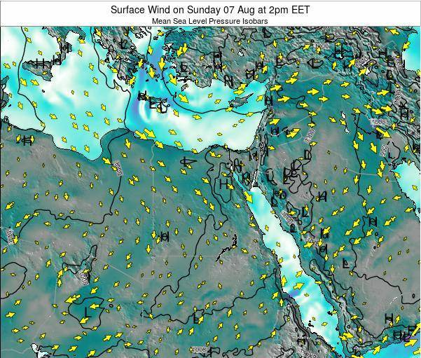 Egypt Surface Wind on Thursday 20 Jun at 8am EET map