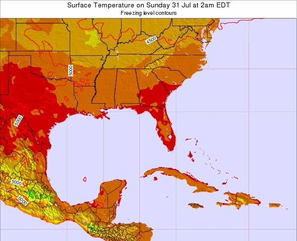Florida Surface Temperature on Wednesday 11 Dec at 7pm EST map