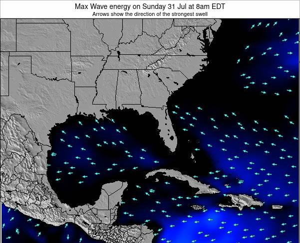 Florida Max Wave energy on Friday 07 Mar at 1am EST
