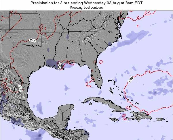 Florida Precipitation for 3 hrs ending Friday 13 Dec at 7pm EST