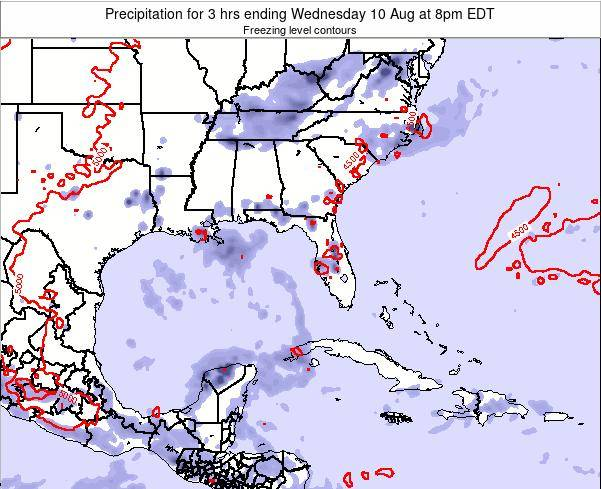 Florida Precipitation for 3 hrs ending Tuesday 24 Jan at 1am EST