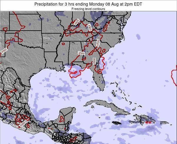 Florida Precipitation for 3 hrs ending Thursday 13 Mar at 2pm EDT