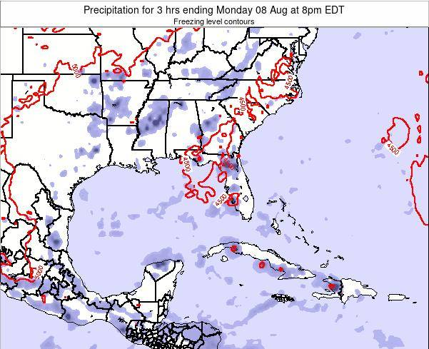 Florida Precipitation for 3 hrs ending Saturday 02 Aug at 2am EDT
