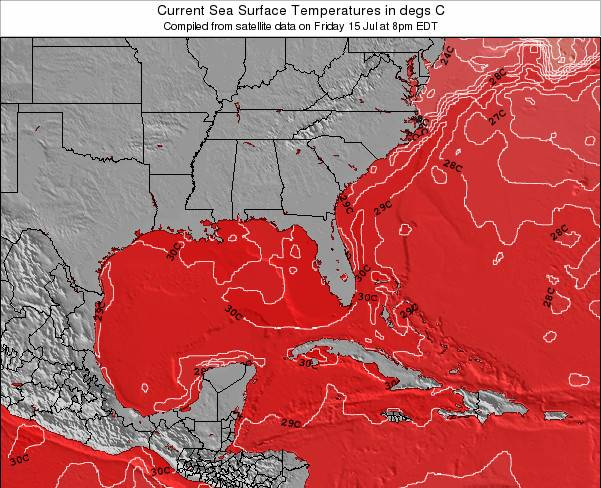 Florida Sea Temperature Map