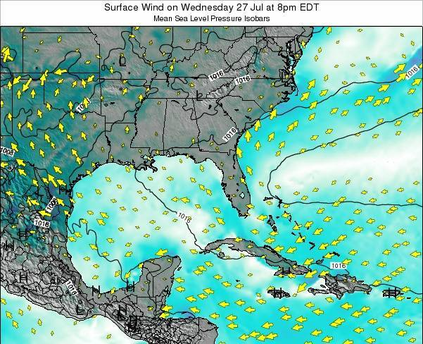 Florida Surface Wind on Thursday 30 May at 2am EDT map
