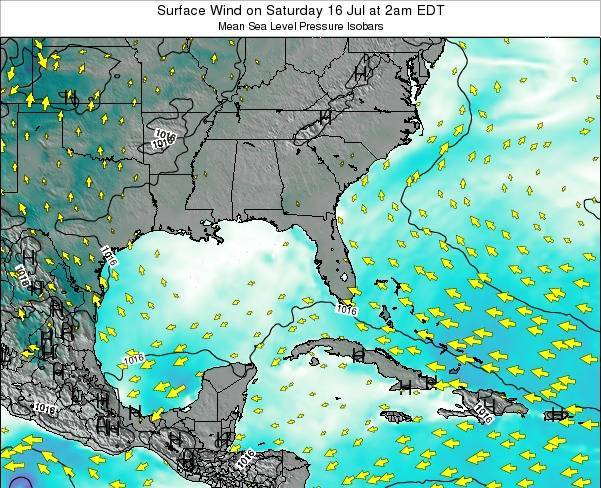 Florida Surface Wind on Thursday 31 Jul at 8am EDT map
