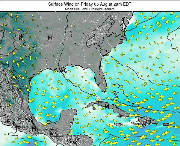 Florida Surface Wind on Sunday 09 Mar at 8am EDT map