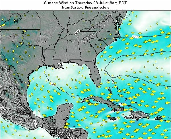 Florida Surface Wind on Thursday 24 Apr at 8am EDT map