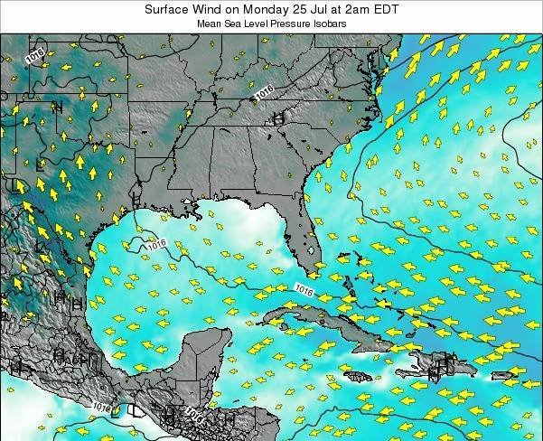 Florida Surface Wind on Friday 25 Jul at 2pm EDT map