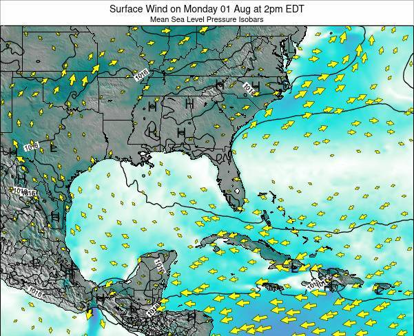 Florida Surface Wind on Friday 13 Dec at 7am EST map