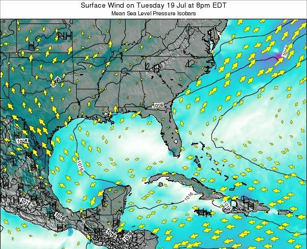 Florida Surface Wind on Wednesday 29 May at 8pm EDT