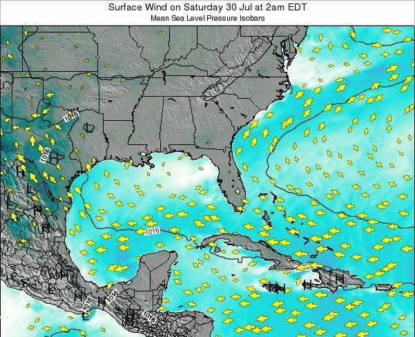 Florida Surface Wind on Sunday 23 Jun at 8pm EDT map