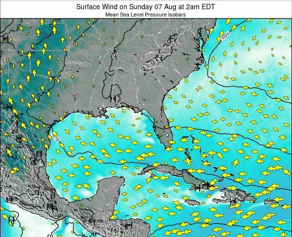 Florida Surface Wind on Saturday 25 May at 8pm EDT map