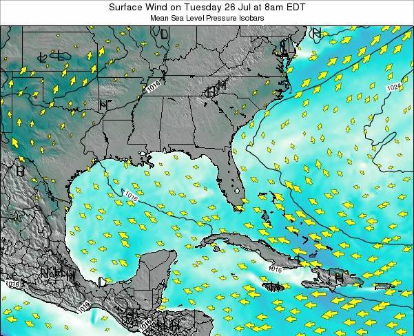 Alabama Surface Wind on Tuesday 28 May at 8am EDT