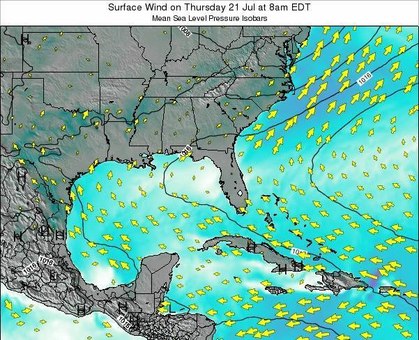 Florida Surface Wind on Saturday 25 May at 8am EDT map