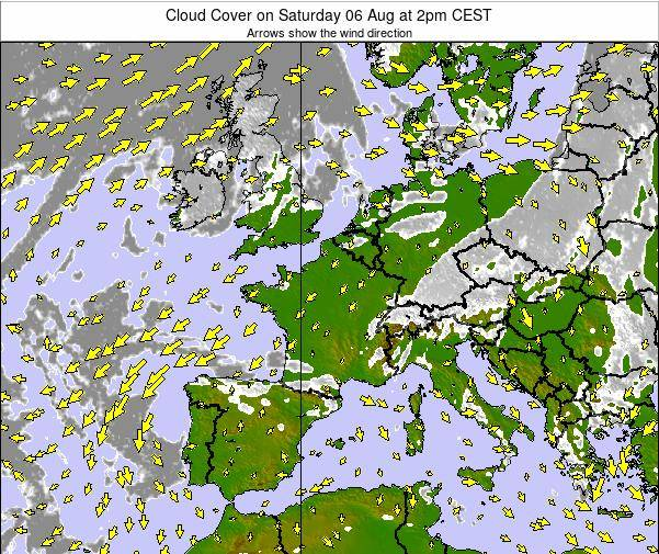 France Cloud Cover on Monday 20 May at 2pm CEST