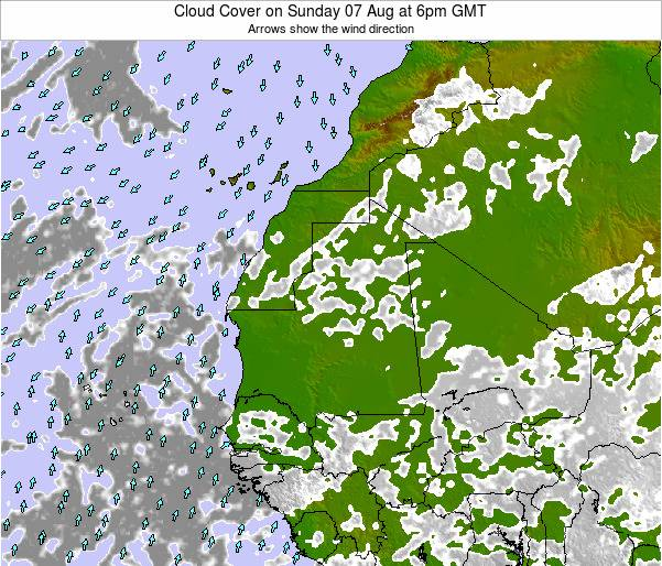 Senegal Cloud Cover on Wednesday 31 Aug at 6am GMT