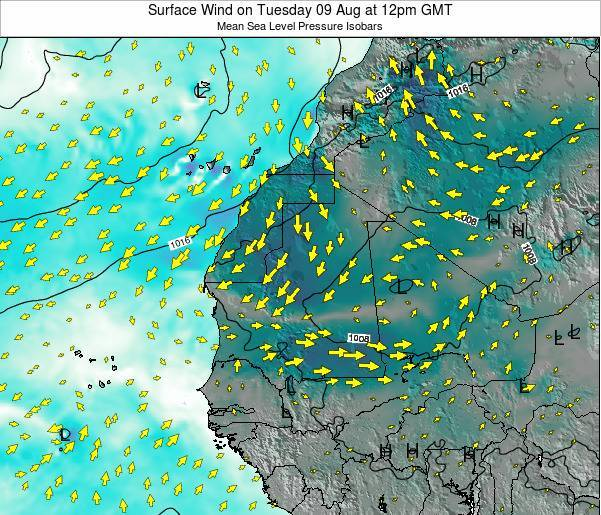 Gambia Surface Wind on Monday 31 Aug at 12pm GMT