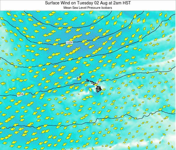 Hawaii, United States Surface Wind on Wednesday 11 Dec at 8pm HST