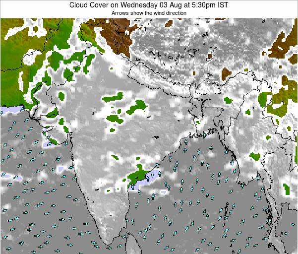India Cloud Cover on Wednesday 30 Jul at 5:30pm IST