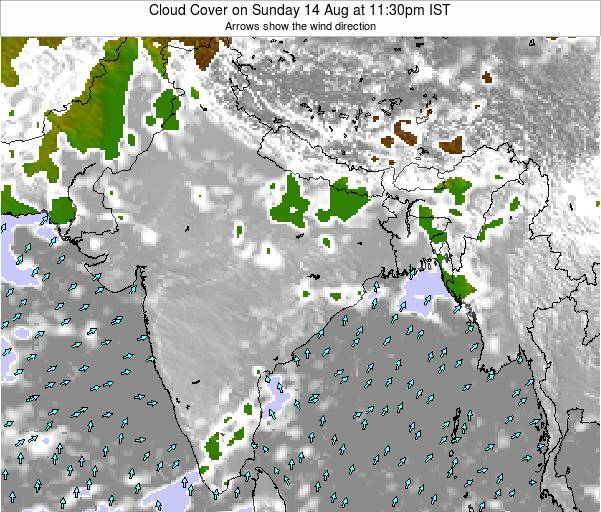 India Cloud Cover on Friday 14 Mar at 5:30pm IST