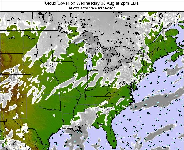 Ohio Cloud Cover on Saturday 25 May at 8pm EDT