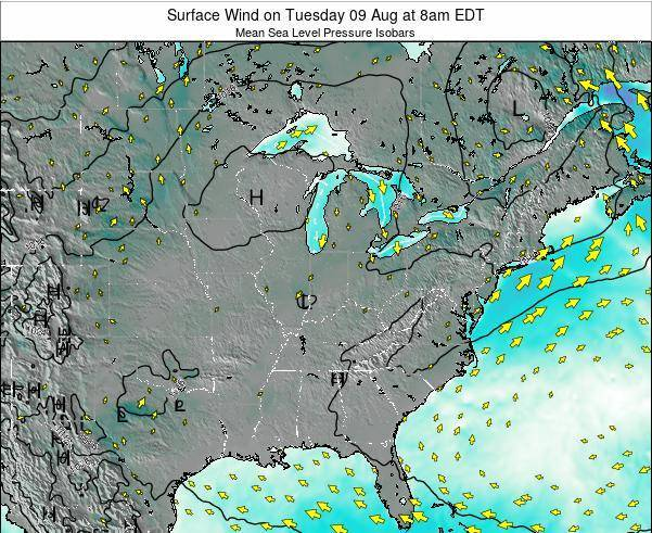 Indiana Surface Wind on Monday 24 Jun at 8am EDT map