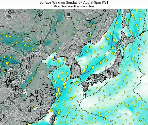 South Korea Surface Wind on Friday 24 May at 9am KST