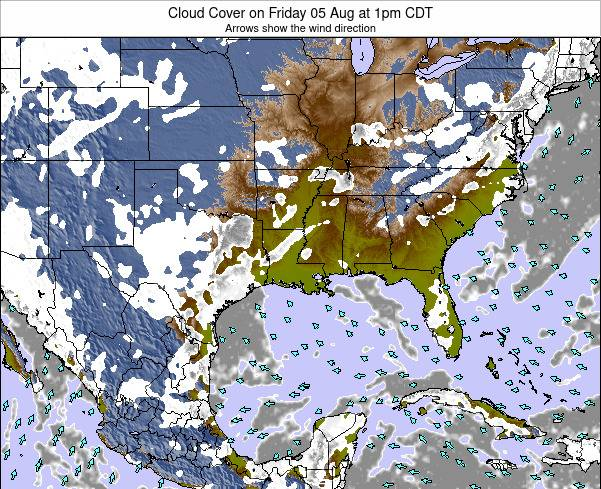 Louisiana Cloud Cover on Thursday 30 May at 7pm CDT