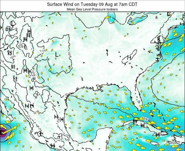 Louisiana Surface Wind on Friday 24 May at 1am CDT