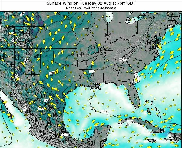 Louisiana Surface Wind on Saturday 25 May at 7pm CDT