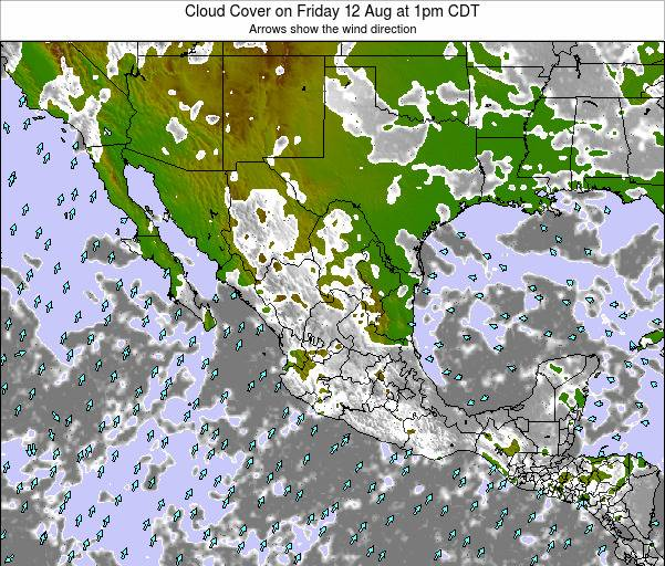 Mexico Cloud Cover on Thursday 30 May at 1am CDT map