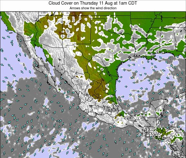 Mexico Cloud Cover on Tuesday 25 Jun at 7pm CDT