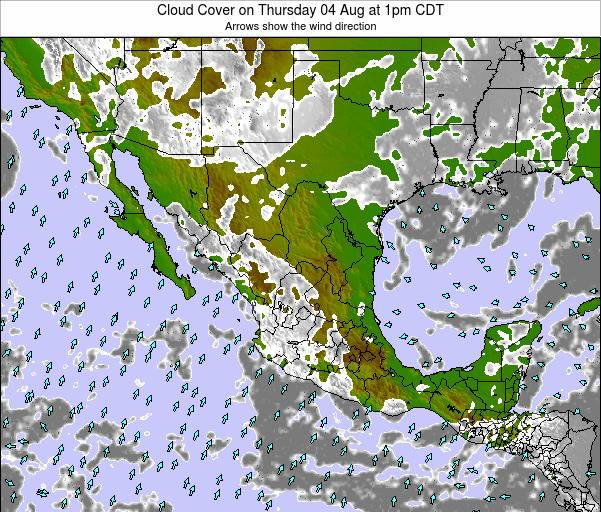 Mexico Cloud Cover on Wednesday 22 May at 1am CDT