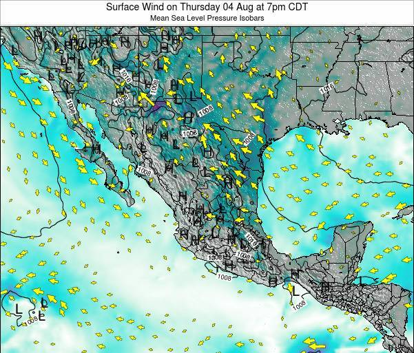Mexico Surface Wind on Thursday 30 May at 1am CDT map