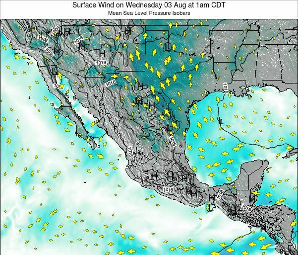Mexico Surface Wind on Thursday 30 May at 1pm CDT map