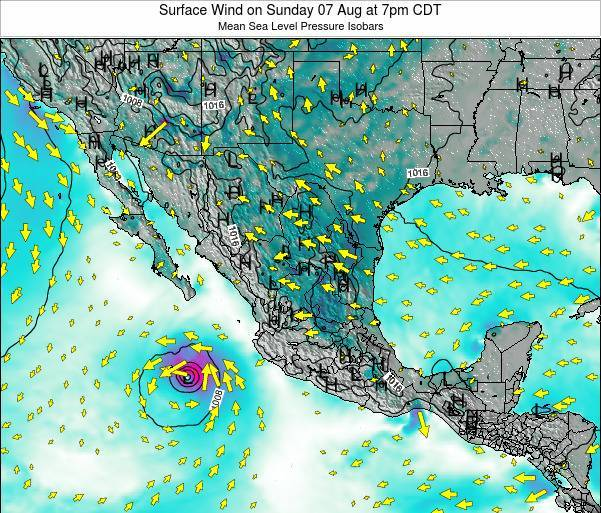 Mexico Surface Wind on Wednesday 22 May at 1am CDT map