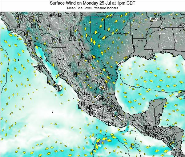 Mexico Surface Wind on Thursday 23 May at 1am CDT map