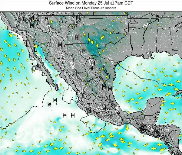 Mexico Surface Wind on Tuesday 22 Jul at 1pm CDT