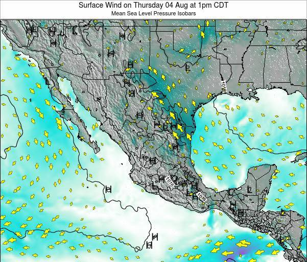 Mexico Surface Wind on Saturday 25 May at 1pm CDT map