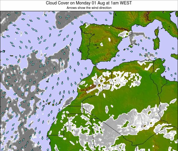 Morocco Cloud Cover on Monday 10 Mar at 12pm WET