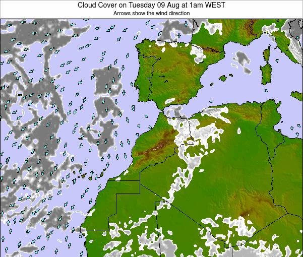 Morocco Cloud Cover on Friday 01 Aug at 1am WEST