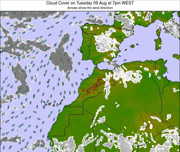 Morocco Cloud Cover on Sunday 03 Aug at 1am WEST