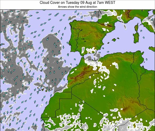 Morocco Cloud Cover on Monday 25 Jun at 1am WEST map