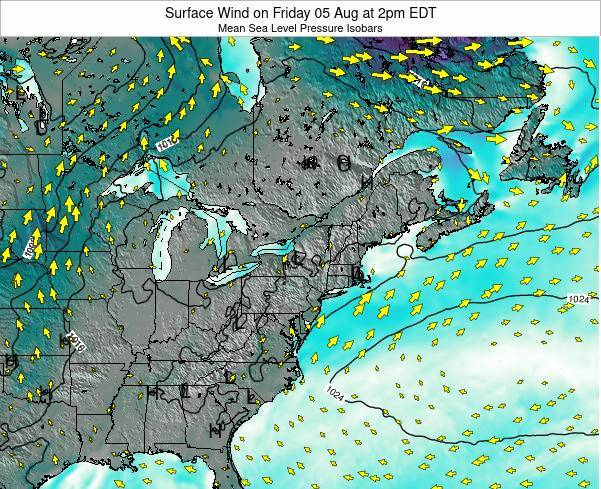 New-York Surface Wind on Saturday 29 Jun at 8am EDT map