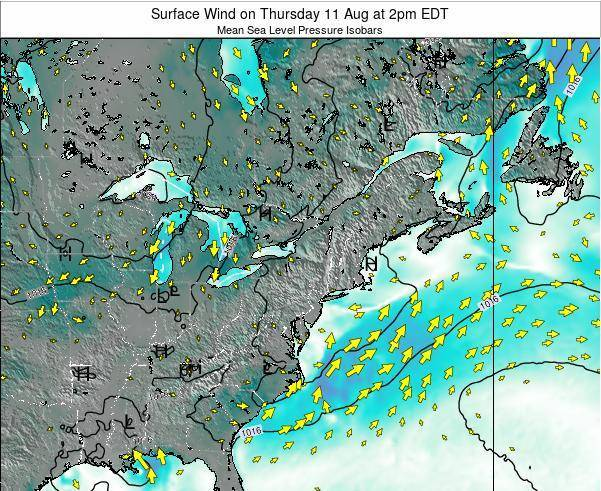 New-York Surface Wind on Thursday 30 May at 2pm EDT