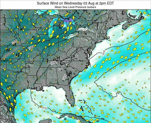 North-Carolina Surface Wind on Sunday 15 Dec at 1am EST
